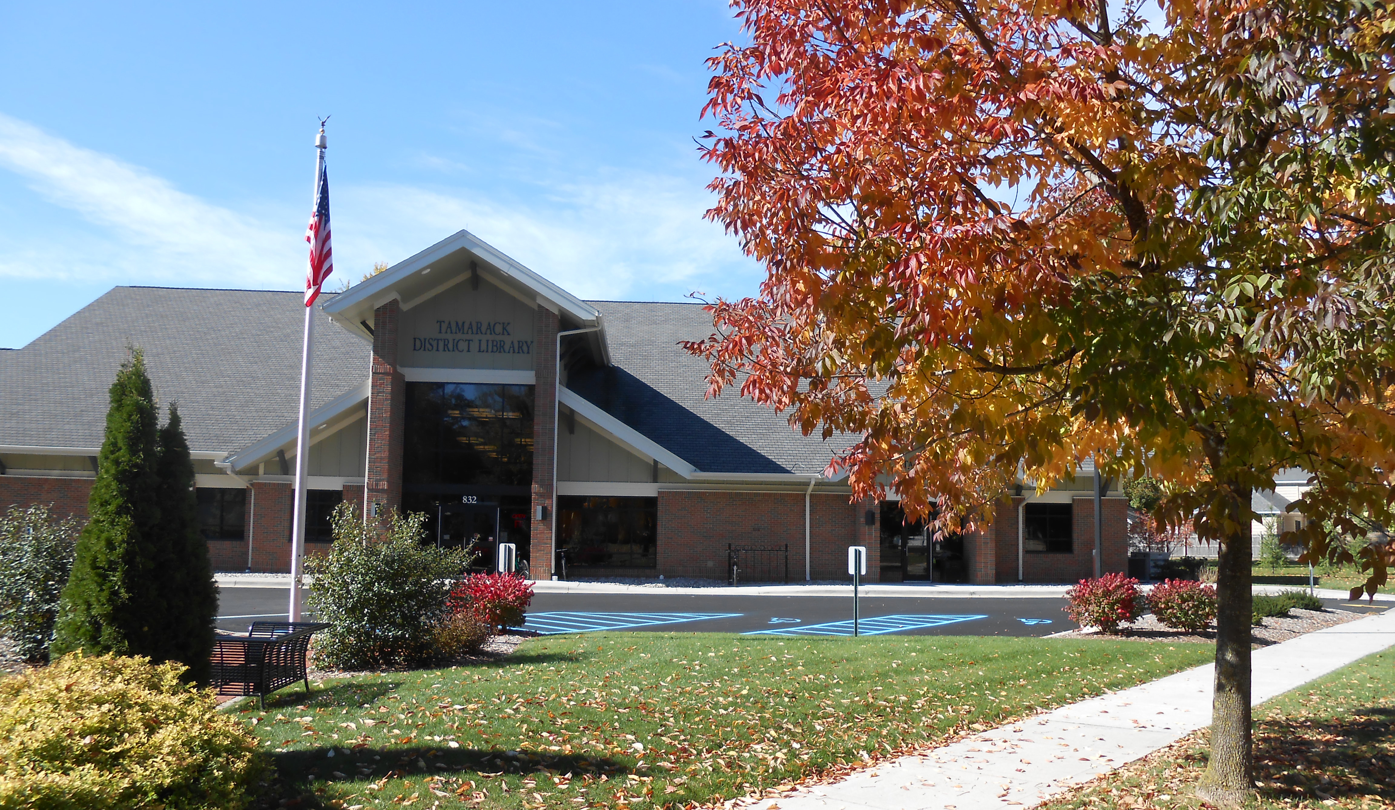 fall library